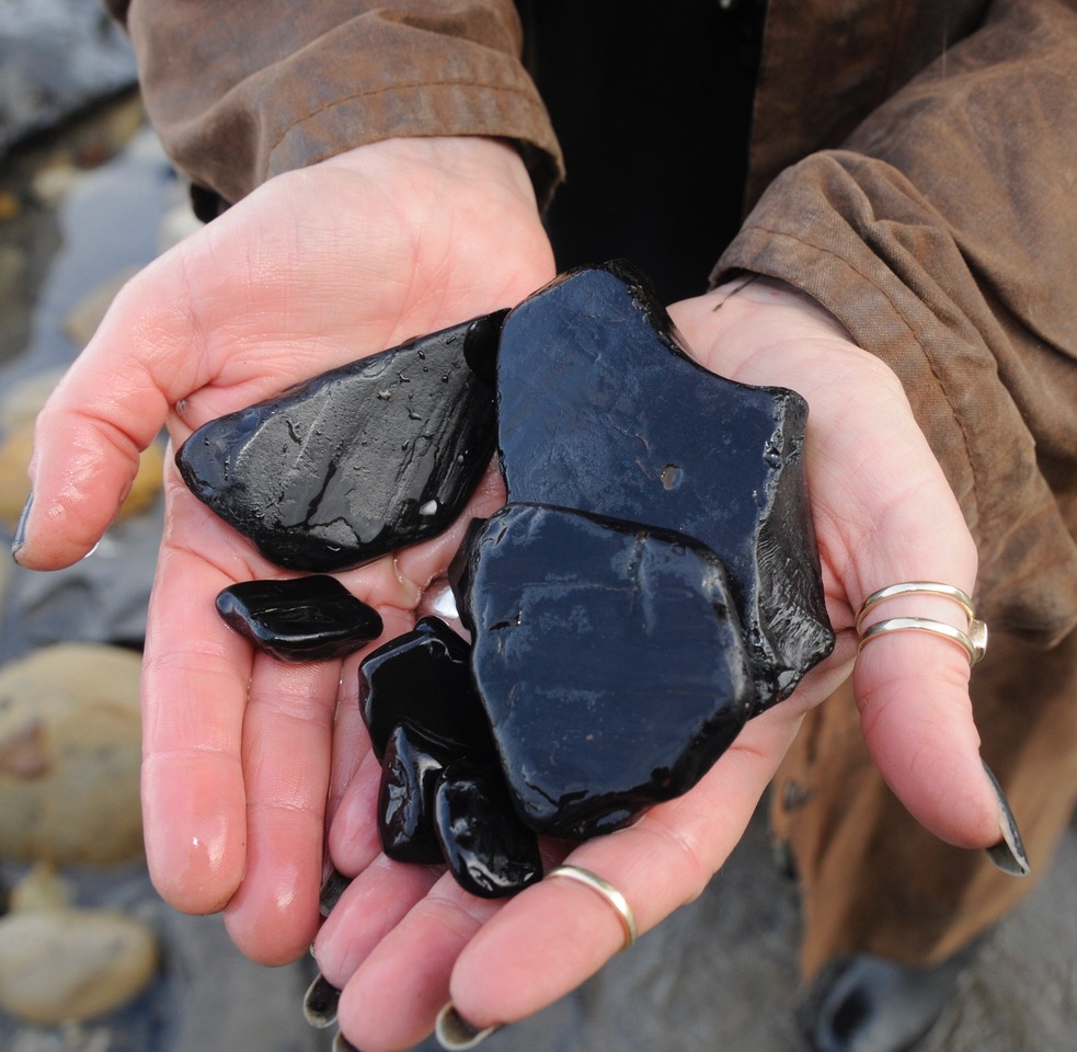 Is Whitby jet coal ?